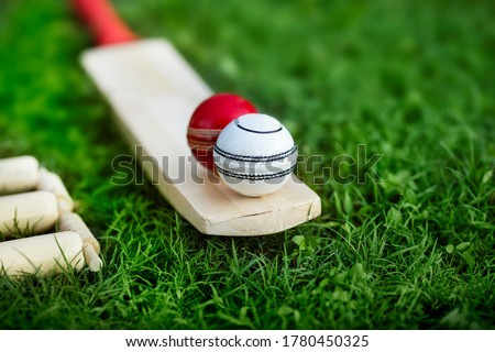 leather Cricket ball resting on a cricket bat placed on green grass cricket ground pitch