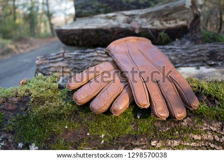 Leather gloves in forest