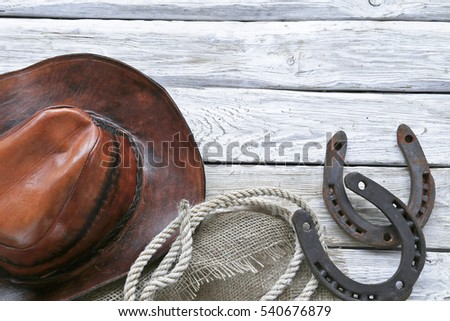 Leather hat , ripe, horseshoes on wooden background