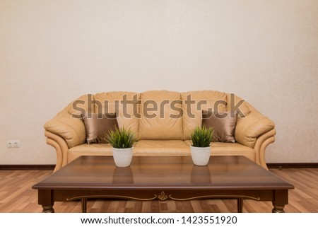 Leather sofa with coffee table, green flowers in white pots #1423551920