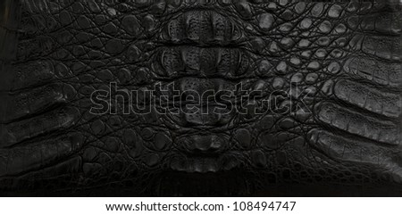 leather texture black background,crocodil e leather