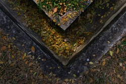 Leaves in drainage ditch at parking
