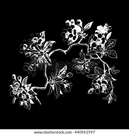 Leaves Isolated Tree Wallpaper Bud Print Berry Oriental Floral Black Spring Chinese Flower Tender Botanical Summer