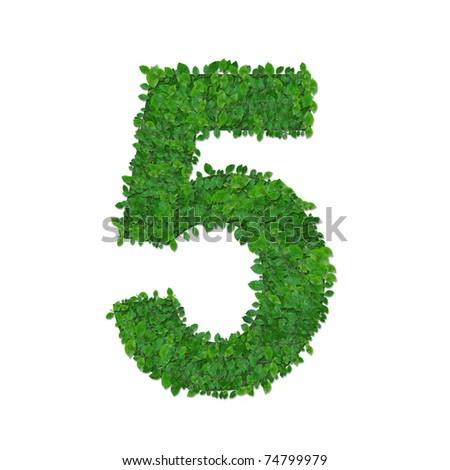 leaves number 5