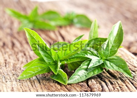 Leaves of basil on a old wooden table
