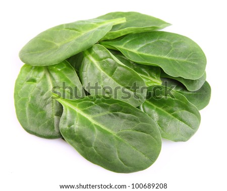 Leaves of spinach on a white background