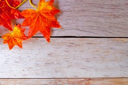 Leaves on a wooden plank background for backdrop