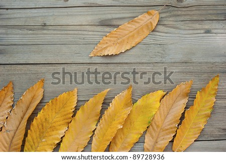 Leaves on wooden background at fall #89728936
