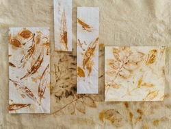 Leaves patterns on papers and fabric with eco-printing process. Tannin and vinegar water on leaves with alum on paper and heat create permanent rust stain on papers and fabric. Botanical imprinting.