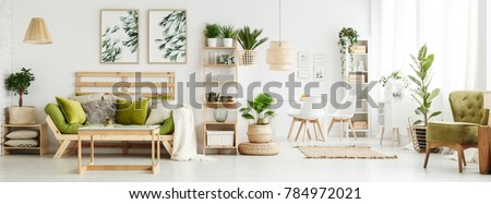 Leaves posters on white wall above green settee with pillows and blanket in spacious living room interior with plants