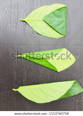 Leaves texture pattern #1153760758