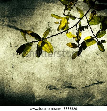 Leaves Vintage background - paper