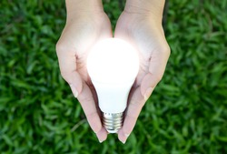 LED bulb with lighting in the human hand with green grass background