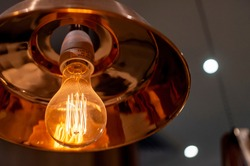 LED incandescent light providing a warm orange glow. These lights are exceptionally energy efficient and hence environmentally friendly.