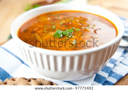 Leek, Chicken and Smocked Sausage Soup with Parsley and Paprika