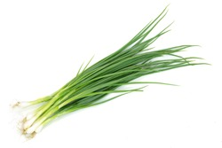 Leek isolated on white background with clipping path