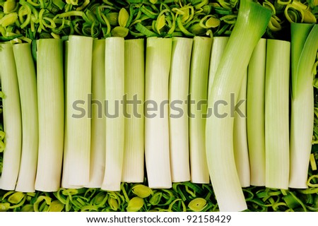 Leeks - stock photo