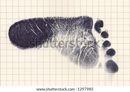 Left Baby foot Photo stock ©