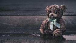 Left behind wet teddy bear on side of road