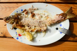 Leftover food and fish bones on plate. Dinner leftovers on a table. Gnawed fish bones after lunch. Grilled fresh fish. Remains of food on a plate.