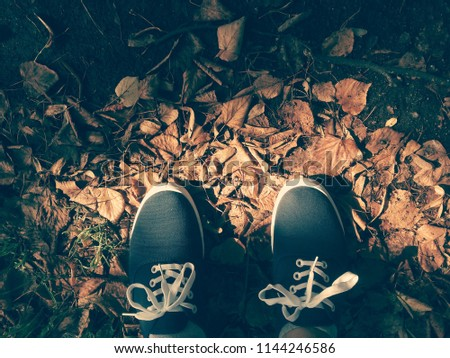 Legs in blue sneakers with white laces against the background of autumn leaves. Vivid photo in vintage style. Foots and sneakers - from the bottom of the frame.