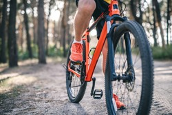 Legs of man in sneakers riding bicycle through pine forest