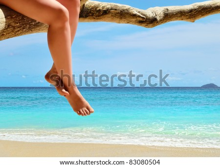 Legs of tanned woman sitting on a dry tree on the sand beach near ocean - stock photo