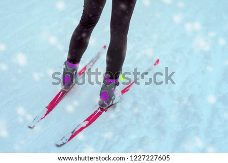 Legs with skis close-up on snow, winter day. Cross country ski. Concept of healthy active lifestyle, winter sport #1227227605