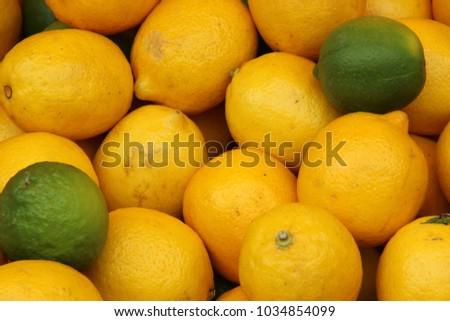 Lemon, Citrus limon