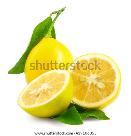 lemon. fruit with half and...