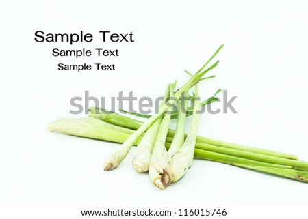 Lemon Grass. Fresh Lemon Grass on background