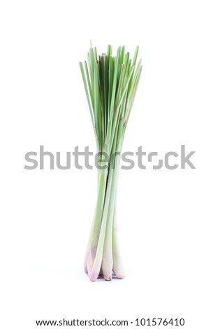 lemon grass isolated on white background