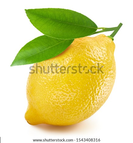 Lemon isolated on white background. Lemon fruit Clipping Path. Quality macro photo