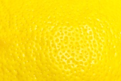 Lemon peel close up. The texture of the lemon peel.