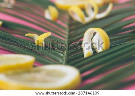 Lemon peel on palm leaf and pink background. Shallow depth of field.