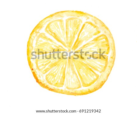 Lemon slice top view, watercolor painting on white , can be use for kitchen decorate, vegetable art, lovely art, modern style,