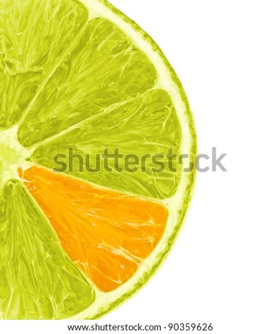 Lemon slice with unique orange branch isolated on white