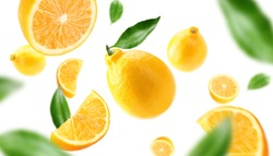 lemon slices and leaves cutted and whole on air
