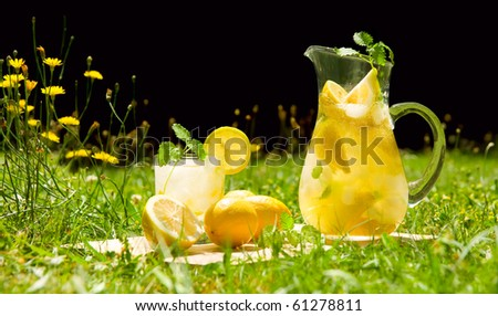Lemonade in meadow