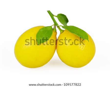 Lemons with leaves isolated on white background with clipping path