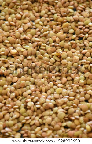 Lentils, legumes, protein, plant based