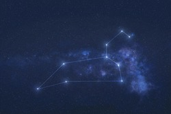 Leo Constellation stars in outer space. Zodiac Sign Leo constellation lines. Elements of this image were furnished by NASA