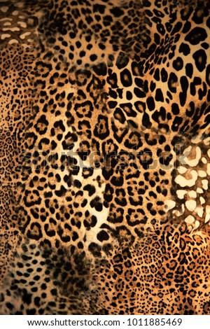 Leopard background texture #1011885469