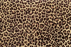 Leopard effect, fabric pattern, Background sample, seamless background  print