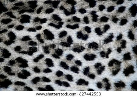 Leopard fur #627442553