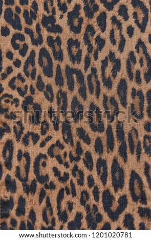 Leopard fur black dot on brown background  #1201020781