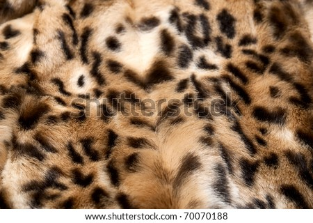 Leopard fur perfect use as background