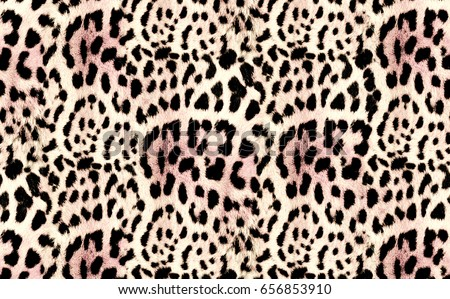 Leopard nature