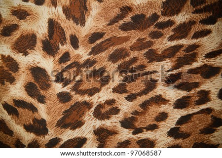 leopard or jaguar pattern background