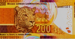Leopard (Panthera pardus). Animal herders with dogs and leopards,  Portrait from South Africa 200 Rand 2012 Banknotes. An Old paper banknote, vintage retro. Famous ancient Banknotes. Collection.